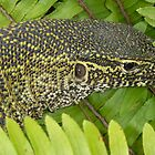 MONITOR LIZARD  by Lilian Marshall