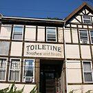 Toiletine Tudor by annimoonsong