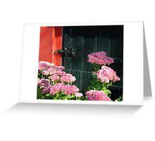 Hemelsleutel ~ Autumn Joy ~ Sedum Spectabile Greeting Card