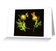 Mini Pomegranates Greeting Card