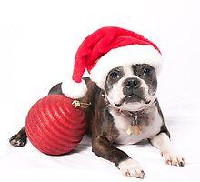 Merry Christmas 2009! by Misti Love