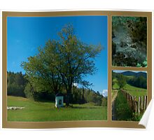 Landscapes from Poland - 6 Poster