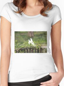 White Doves Women's Fitted Scoop T-Shirt