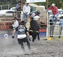 Don't come at me!- Woodstock Rodeo Tasmania 2009 by PaulWJewell