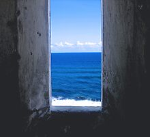 window to the world by lingo