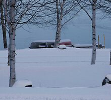 A Day by the Lake in Winter by Brenda Dow