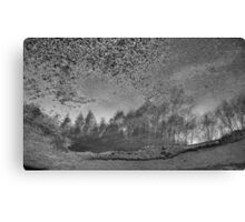 Reflections in a Puddle Canvas Print