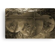 Silver -  Art $ Products Design  Canvas Print