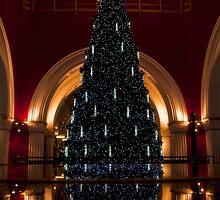 Xmas Tree by David Petranker