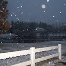 Night Snow Over Pond by jessica campbell