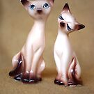 cats on brown by Soxy Fleming