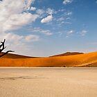 Namibia - Deadvlei by Flemming Bo Jensen
