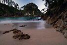 Pokohino Beach, Coromandel by Michael Treloar