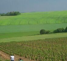 a vast France landscape Sticker