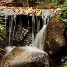 Autumn Waterfall by Olga Zvereva