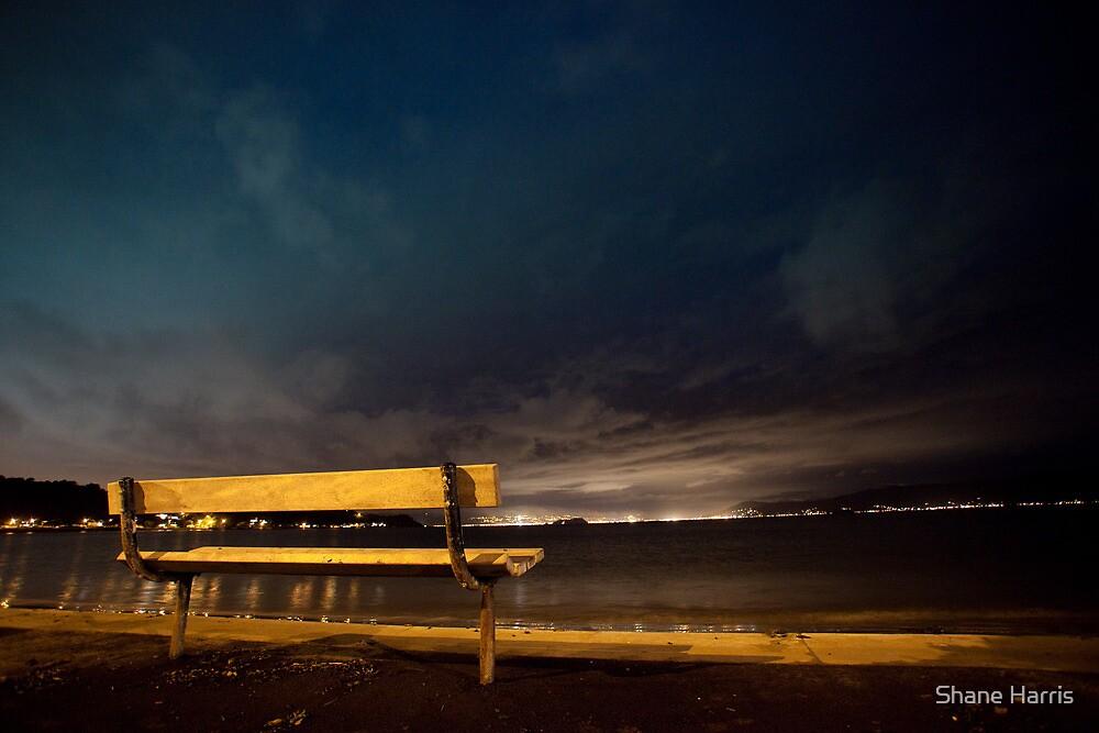 Lonely Dark Nights Ahead by Shane Harris