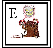 E is for Echidna Photographic Print