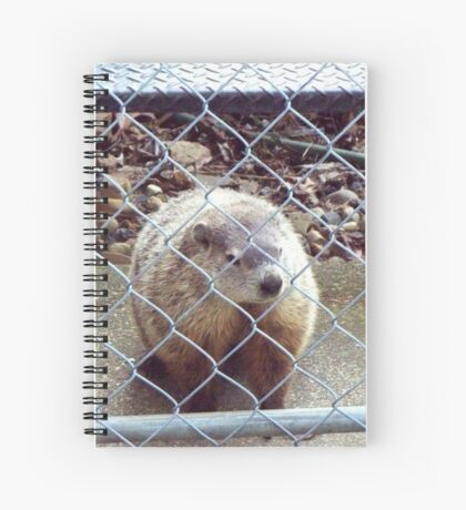 Charlotte - Who is visiting whom? Spiral Notebook