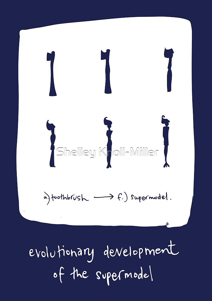 Evolutionary development of a Supermodel (blue) by Shelley Knoll-Miller
