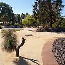21st Century Garden by Leanne Nelson