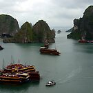 Halong Bay Junks by chriso