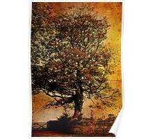 A Tree at Antony Poster