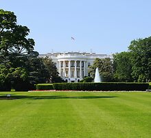 Whitehouse by TomSpencer
