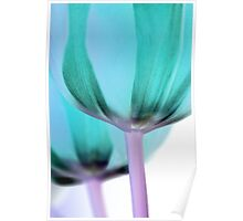 Inverted Tulips Poster