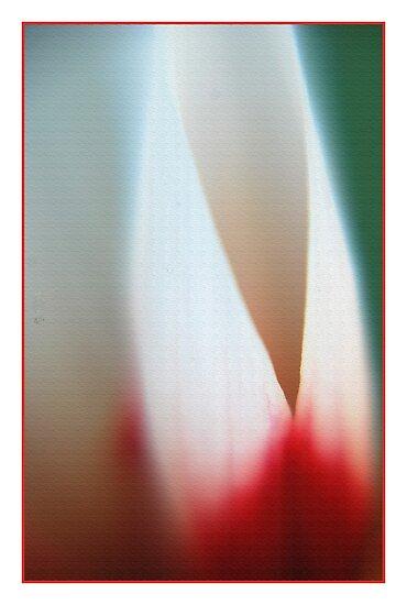 Flamez by Dr. Harmeet Singh