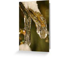 Jewel of Ice 1 Greeting Card
