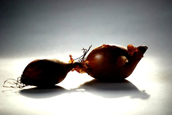 Shallots by TriciaDanby