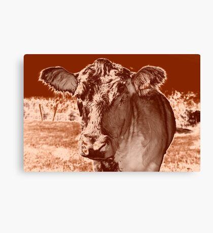 sad cow Canvas Print