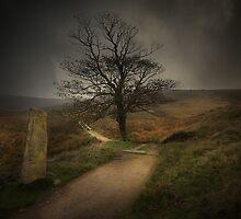 In Bronte's Footsteps by eddiej