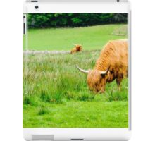 Scottish Highland Cows iPad Case/Skin