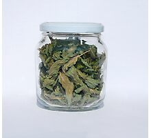 Dried Peppermint In Jar   Photographic Print