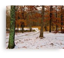 Winter Alburn Canvas Print