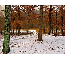 Winter Alburn Photographic Print