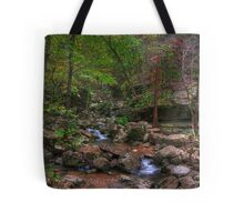 Blanchard Springs Little Stream Tote Bag