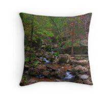 Blanchard Springs Little Stream Throw Pillow