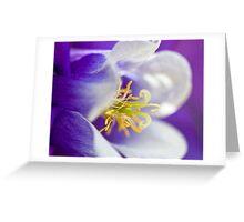Shades of deep purple Greeting Card