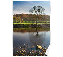 North Yorkshire river view Poster