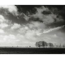 The Great Emptiness by Wouter Brandsma