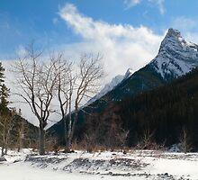 Winter mountains by zumi