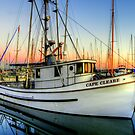 Cape Cleare ~ Port Townsend, WA ~ HDR Series by lanebrain photography