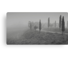 Umbrian Country Road Canvas Print