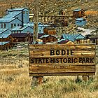 Welcome To Bodie by pat gamwell