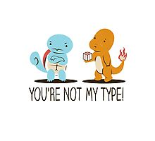 You're Not My Type! Photographic Print