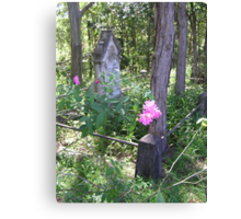 Talle Valley Cemetery Canvas Print