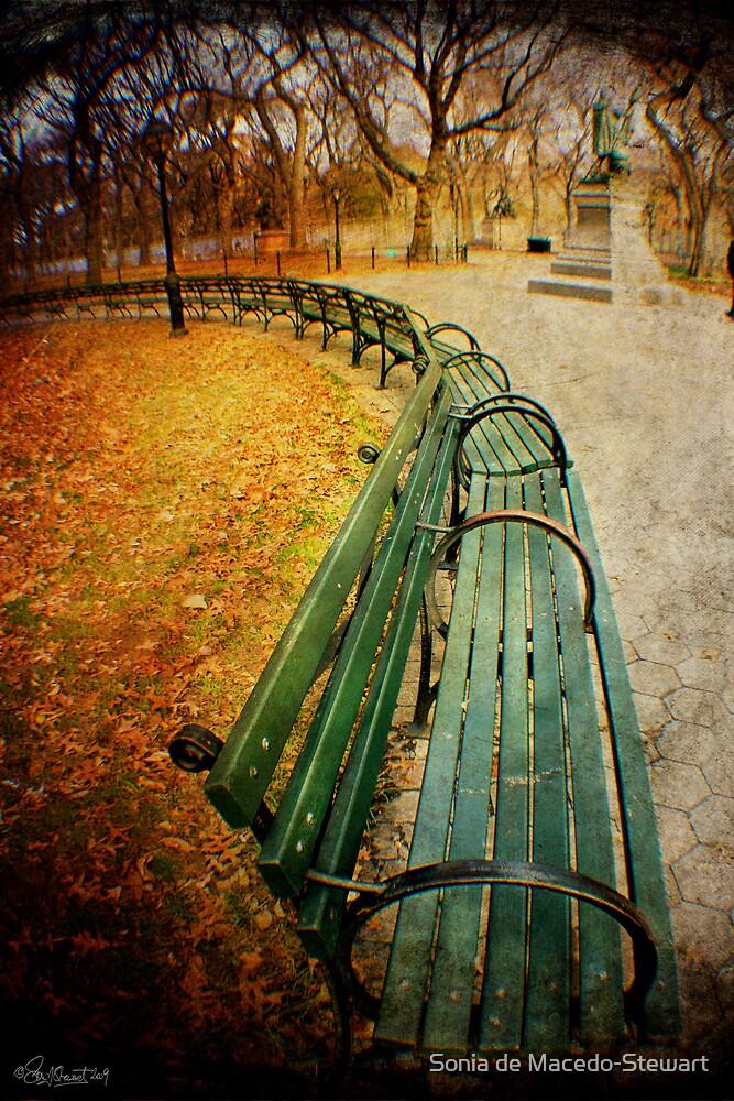 Central Park Benches by Sonia de Macedo-Stewart