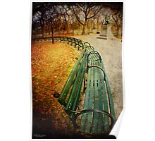 Central Park Benches Poster